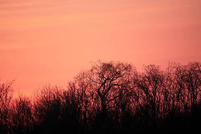 Photograph - Raspberry Sky by Penny Hunt