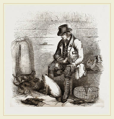 Rat Terrier Drawing - Rat-catcher And Terriers by Litz Collection