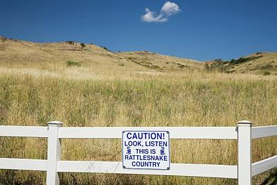 Rattlesnakes Photograph - Rattlesnake Warning Sign by Jim West