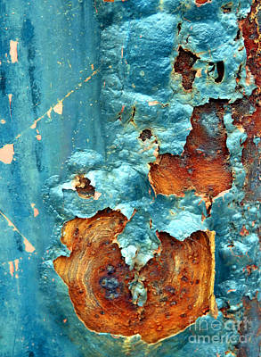 Photograph - Ravages Of Age by Marcia Lee Jones