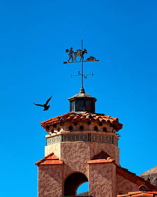 Grapevine Photograph - Raven And Weather Vane Death Valley Ranch by Troy Montemayor