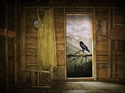 Photograph - Raven At The Open Door by Randall Nyhof