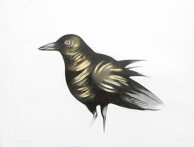 Fading Drawing - Raven by Federico Cortese