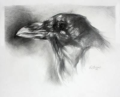 Raven Head Original by Derrick Higgins