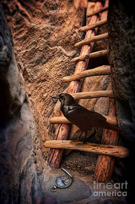 Photograph - Raven On Ladder With Compass by Jill Battaglia