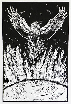 Drawing - Raven Stealing Fire From The Sun - Woodcut Illustration For Corvidae by Dawn Senior-Trask