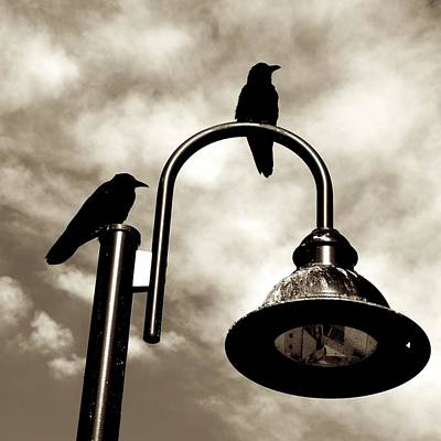 Photograph - Ravens Above The Light by Eric Tressler