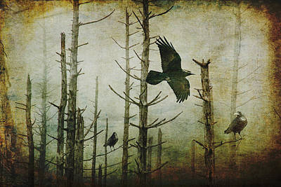 Photograph - Ravens Of The Mist Artistic Expression by Randall Nyhof