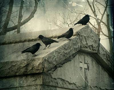 Crows Mingling Photograph - Ravens On A Gray Day by Gothicrow Images