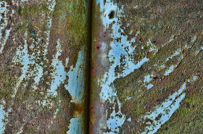 Essence Of Life Photograph - Raw-chasm by Tom Druin