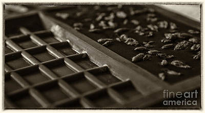 With Red Photograph - Raw Chocolate Setting In Sepia Tone by Iris Richardson