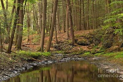 Photograph - Raymondskil Creek Reflections by Adam Jewell
