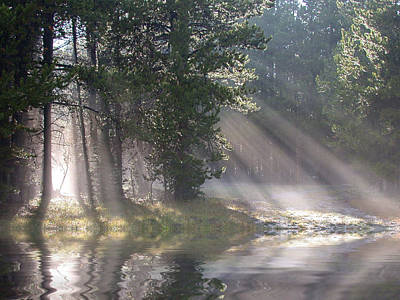 Nature Photograph - Rays Of Light by Shane Bechler