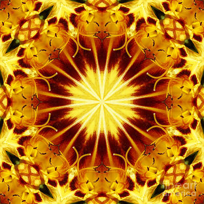 Stamen Digital Art - Rays by Wendy Wilton