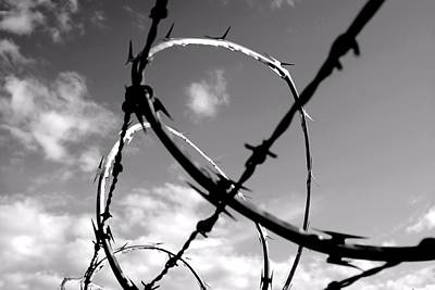 Photograph - Razor Wire by Bob Wall