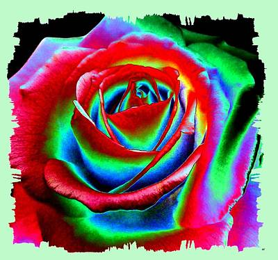 Digital Art - Razzle Dazzle Rose by Will Borden