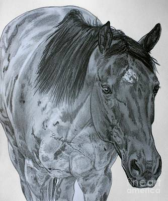 Equine Drawing - Razzy by Lucka SR