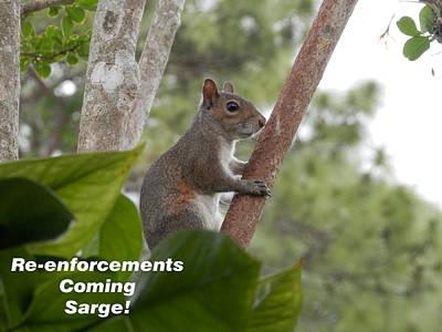 Photograph - Re Enforcement S Coming by Belinda Lee
