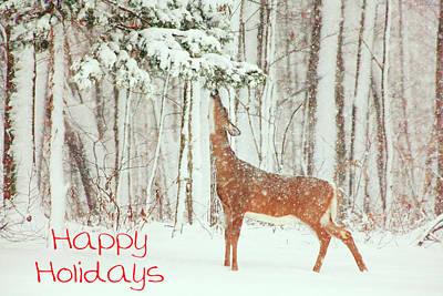 Reach For It Happy Holidays Art Print by Karol Livote