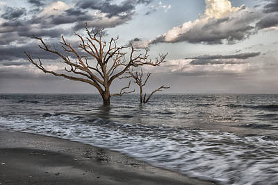 Botany Bay Photograph - Reach For The Sky II by Mike Lang
