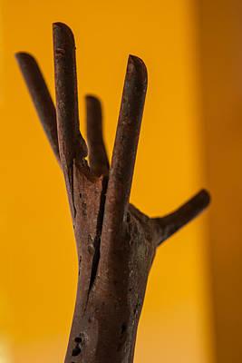 Photograph - Reach by Scott Campbell