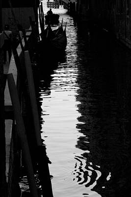Photograph - Reaching Back - Venice by Lisa Parrish