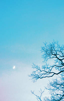 Photograph - Reaching For The Moon By Jrr by First Star Art