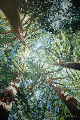 Giant Sequoia Painting - Reaching For The Sky by Cedar Lee