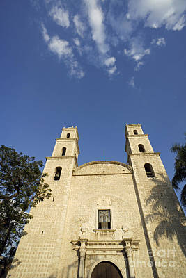 Photograph - Reaching Heavenward Merida Mexico by John  Mitchell