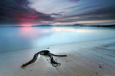Driftwood Beach Photograph - Read The Signs by Rui David
