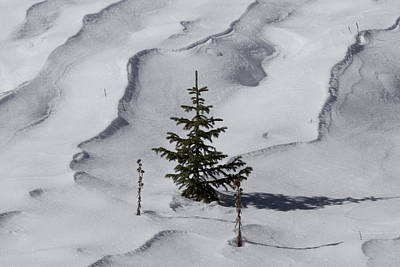 Snow Drifts Photograph - Ready For Christmas by Ernie Echols