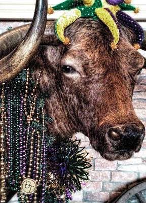Photograph - Ready For Mardi Gras by Cathy Jourdan