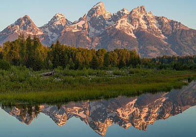 Teton Wall Art - Photograph - Ready For My Closeup by Kristopher Schoenleber