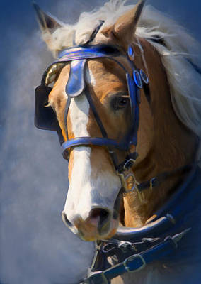 Draft Horse Digital Art - Ready To Go by Posey Clements