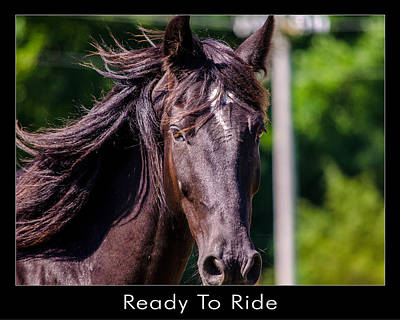 Ready To Ride Art Print by Dan Holland