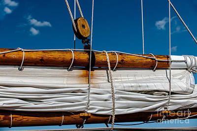 Photograph - Ready To Set Sail by Dale Powell