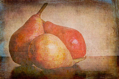 Photograph - Readying For Autumn by Heidi Smith
