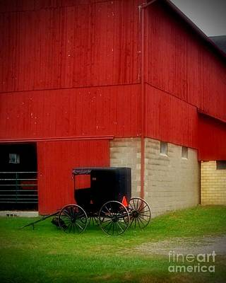 Photograph - Readying The Buggy by Desiree Paquette