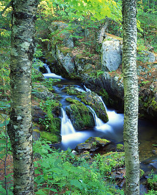 Photograph - Reany Falls II by Ray Mathis