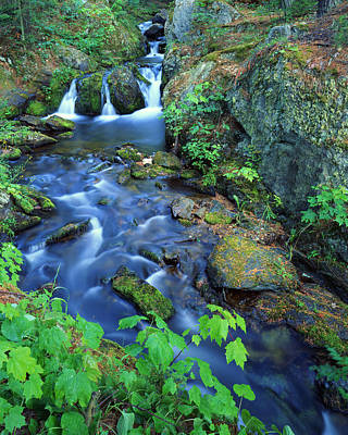 Photograph - Reany Falls by Ray Mathis