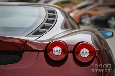 Photograph - Rear View by Dennis Hedberg