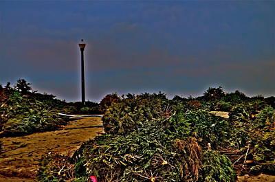Photograph - Rebuilding Dunes by Joe  Burns