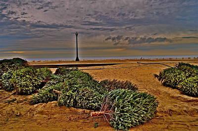 Photograph - Rebuilding The Dunes by Joe  Burns