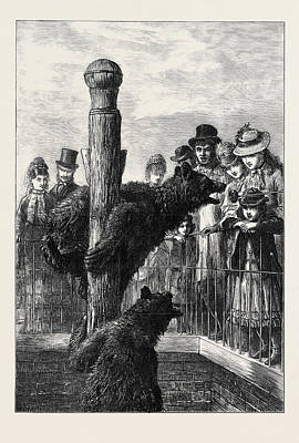 Jesus Christ Drawing - Receiving Visitors On Easter Monday At The Zoological by English School