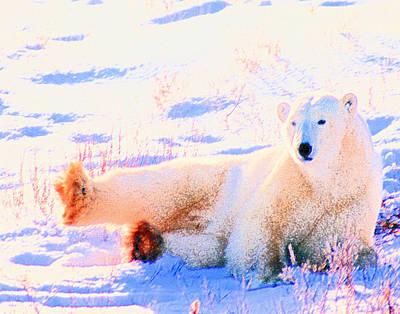 Digital Art - Reclining Polar Bear by Alice Ramirez