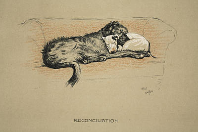 Bull Terrier Drawing - Reconciliation, 1930, 1st Edition by Cecil Charles Windsor Aldin