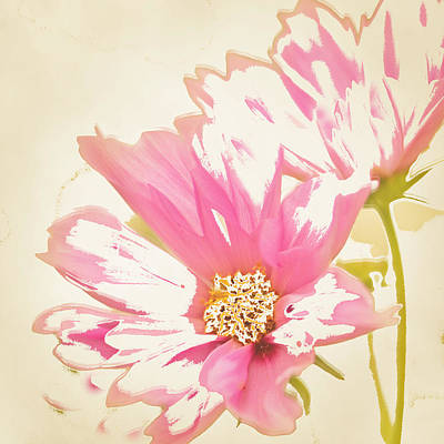 Reconstructed Flower #6 Art Print