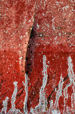 Realism Photograph - Red Abstraction 1 by Tom Druin