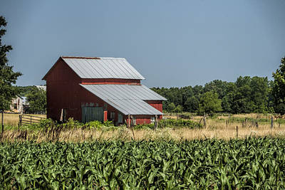 Red Amish Barn And Corn Fields Art Print by Kathy Clark