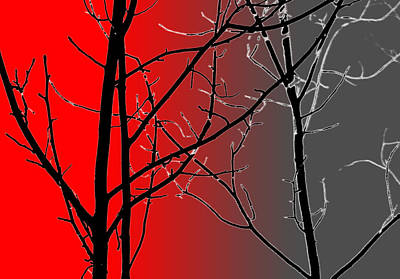 Red And Gray Art Print
